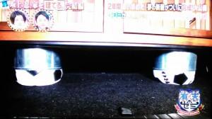 坂上忍の車に犬用のケージを作る020