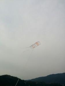 変形六角形凧の作り方003