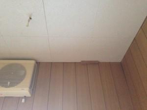 トイレの天井をクリアトーンに016