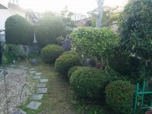 庭木の剪定!?012