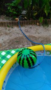 プールの水をホース一本で汲み取る方法007