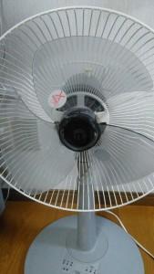 扇風機のキュルキュル音の原因は・・・006