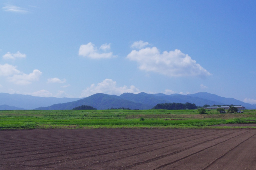 【シェア畑】ストレス社会を農園で緩和!野菜嫌いな子供も・・・