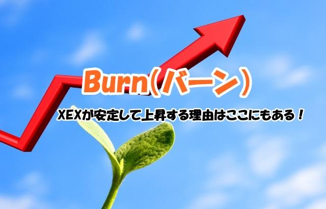 【バーン】XEX爆上げ注意報!6億円ボーナス配布も・・・!?