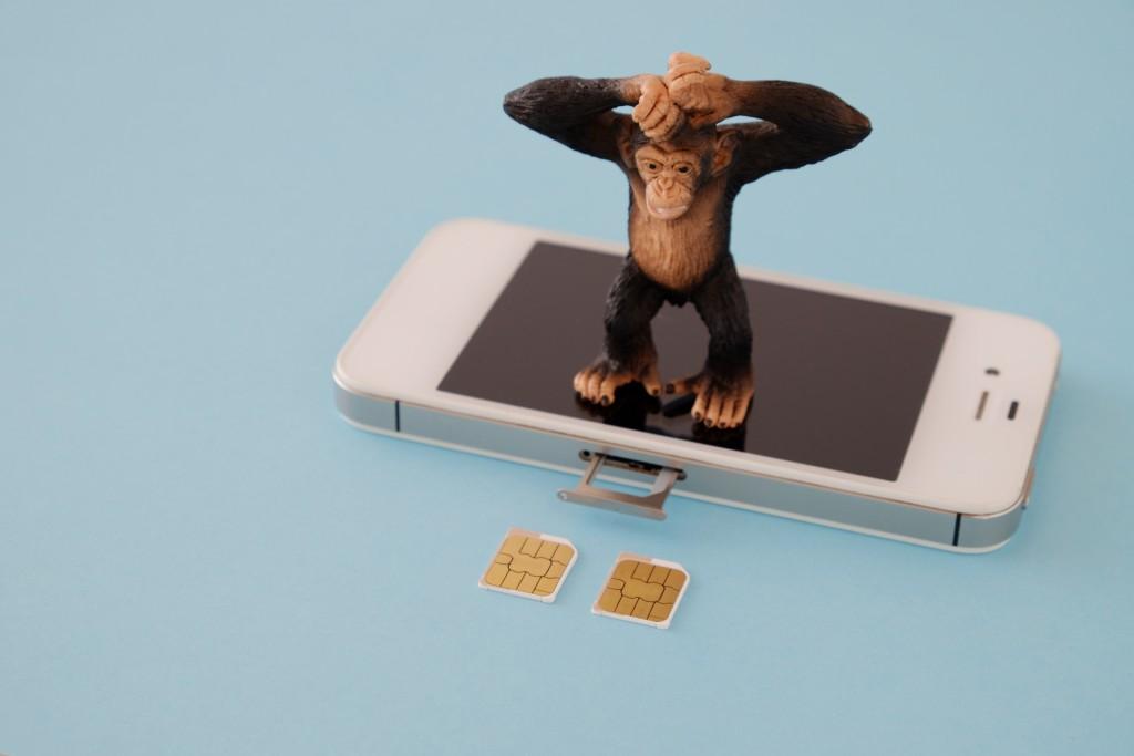 auガラホ+楽天モバイルで1602円/月!?通話のみのガラホって持てるの?