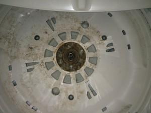 洗濯槽の落ちない匂いを撃退012