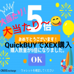 【5倍のチャンス】QuickBuyでXEXを購入