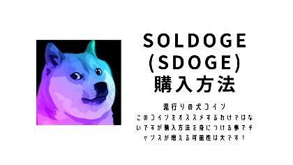 【犬コイン】オススメしませんがSolDoge(SDOGE)購入方法